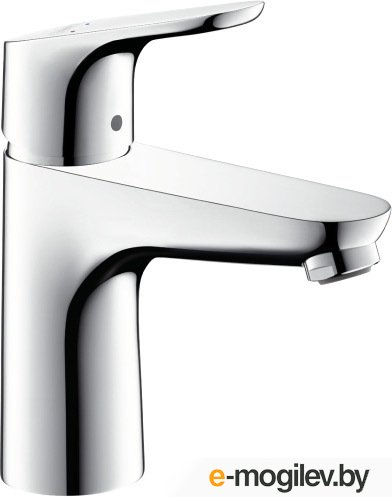 Hansgrohe Focus 31513000